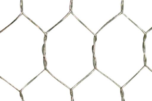 亜鉛引亀甲金網